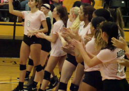 Dig Pink Volleyball Match