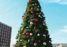 Spreading Holiday Cheer: CU Tree Lighting Celebration
