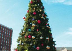 Spreading Holiday Cheer: CU Tree Lighting Celebration