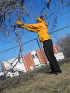 A day on, not off: Vice President of University Advancement Albert Johnson, Jr., cuts stray branches at Boys & Girls Club-Lawton. Johnson and other Aggies volunteered at various locations for MLK Day of Service.