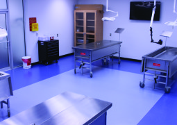 Cadaver Lab to Open this Summer