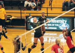 Volleyball Falters on Road