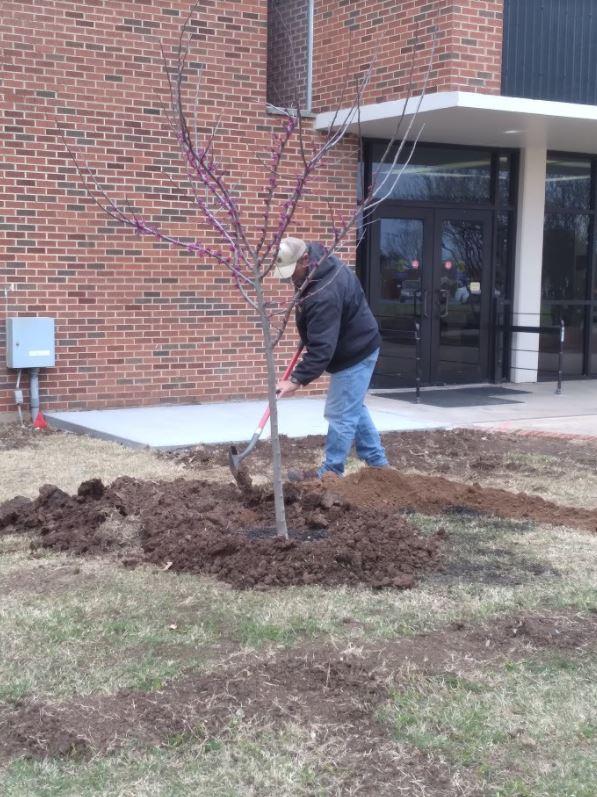 Tree Planting: Arbor Week 2021